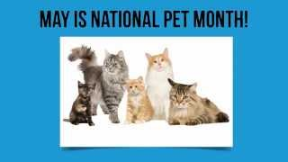 May is National Pet Month!