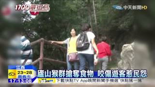 20150909中天新聞 江西廬山風景區 獼猴狠咬、抓傷遊客