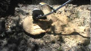 Stump Grinding   Do It Yourself And Save $$$$