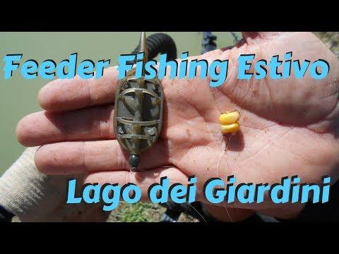 Il navigatore per pescare per comprare gps in linea immagazzina