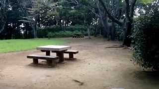 五本松公園のイメージ