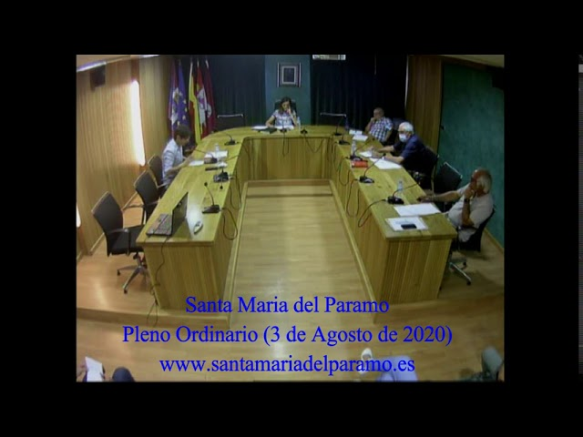 Pleno Ordinario (3 de agosto 2020)