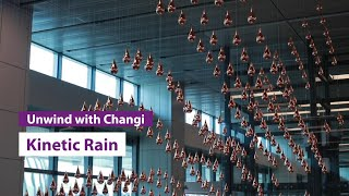 Unwind with Changi: Kinetic Rain