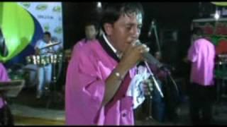 JILGUERITO JARIS DE ÑAÑA