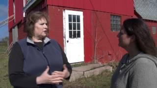 Market - Grass Fed Beef at Farm on Wheels