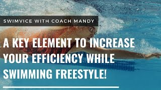 A Key Element to Increase Your Efficiency While Swimming Freestyle!
