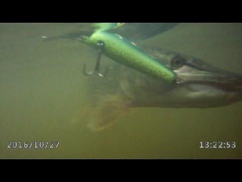 Vobler Megabass Orochi13 Snake Slider 12.7cm 31.6g Mamushi