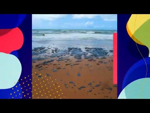 Impactos do derramamento de óleo para os pescadores artesanais