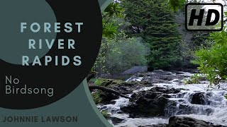 Forest Nature Sounds W/O Birds Singing-Soothing Sound of Waterfall Relaxation-Mindfulness-Meditation