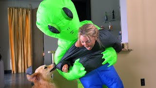 Dogs React to Owners Being Abducted by Aliens