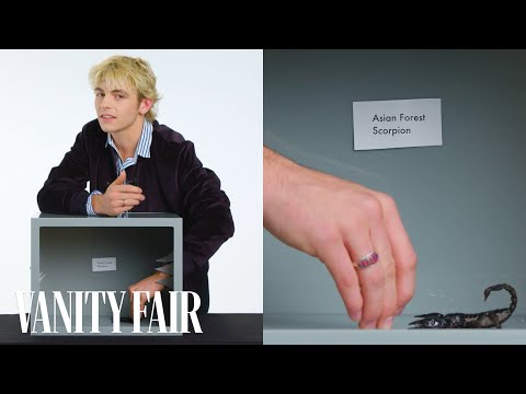Ross Lynch Touches a Scorpion, Hissing Cockroach & Other Weird Stuff | Vanity Fair