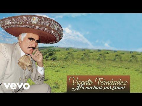 Vicente Fernández - No Vuelvas por Favor (Cover Audio)
