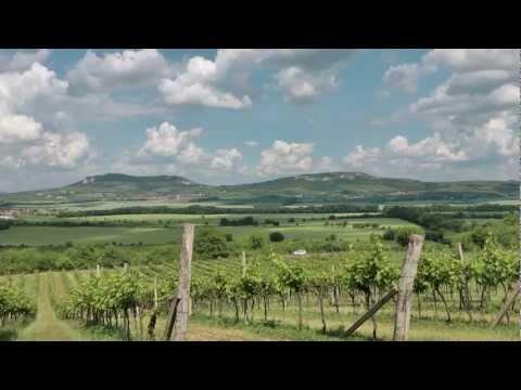 Usedlost pod vinohrady