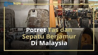 Viral Potret Tas dan Sepatu yang Berjamur akibat Mal Tak Terjamah Manusia saat Lockdown di Malaysia