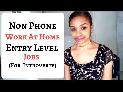 NON PHONE Work At Home JOBS For Introverts. Entry Level.