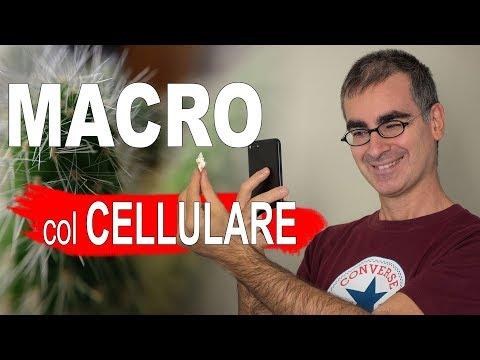Foto Macro col Cellulare: come fare Foto BELLE anche senza Lenti Macro per Smartphone