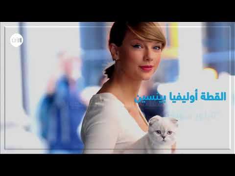 العرب اليوم - شاهد : أغنى الحيوانات الأليفة في العالم