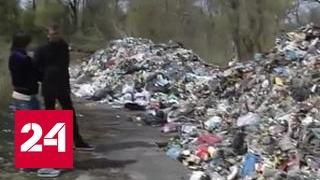 Видео: Львов замусорил всю Украину