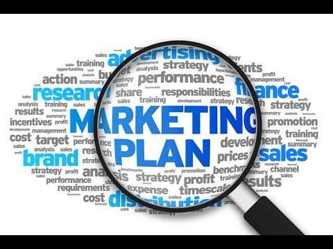 Маркетинг план BIOSEA. Подробно рост от новичка до Директора