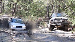Subaru destroys 'real 4wds' in mud pit