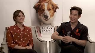 A Dog's Journey    Kathryn Prescott & Henry Lau Generic Junket Interview    #SocialNews.XYZ