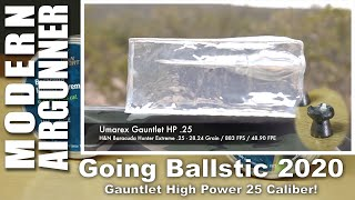 Going Ballistic 2020 - Gauntlet Hight Power 25 from Airgun Pro Shop