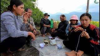 Rau Bép Thụt ống Tre đặc sản núi Lâm Đồng - Hương vị đồng quê - Bến Tre - Miền Tây