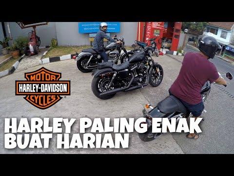 mp4 Harley Iron 883 Bekas, download Harley Iron 883 Bekas video klip Harley Iron 883 Bekas