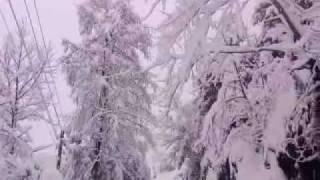 Çayeli Kemerden Canlı Kar Yağışı