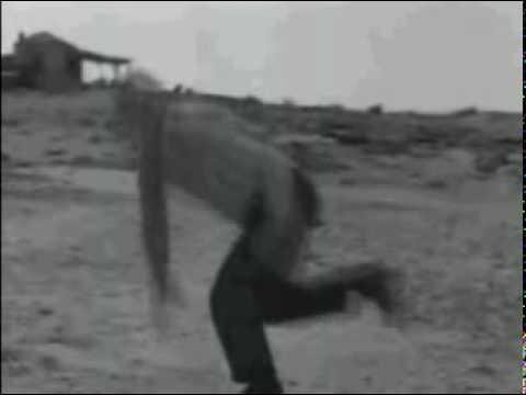 Zorba the Greek (Song) by Herb Alpert & The Tijuana Brass