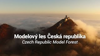 Modelový les Česká republika / Czech Republic Model Forest