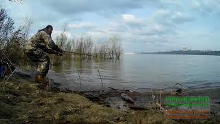 Ловля язя на поплавочную удочку летом