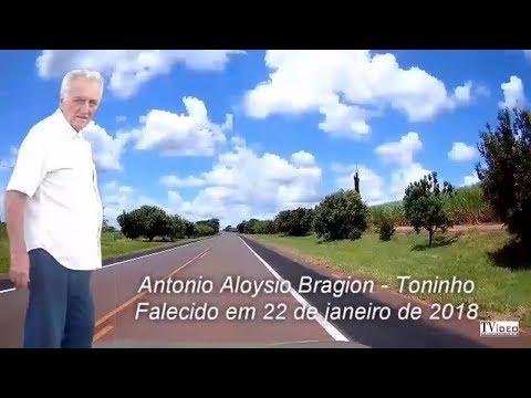 CORTE DE ÁRVORES GERA POLÊMICA EM BOCAINA