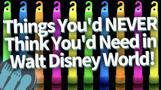 19 Things You NEVER Thought You'd Need in Disney World...But You DO!