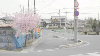 """前野健太 """"伊豆の踊り子"""" (Official Music Video)"""