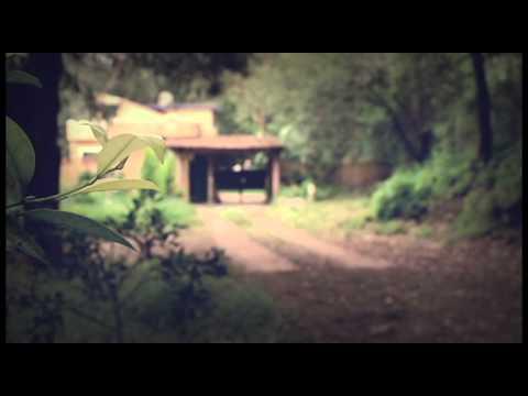 Monk.E x KNLO – Joeur de Harpe