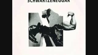 """schwartzeneggar - goodbye to all that 7"""""""