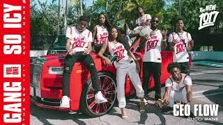 Gucci Mane - CEO Flow [Official Audio]