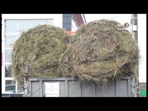 Осенняя сельскохозяйственная ярмарка ко Дню Республики