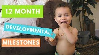 1 Year Old Typical Developmental   Developmental Milestones