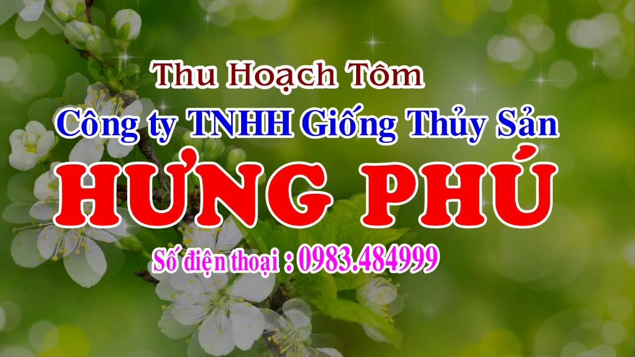 THU HOACH TOM SU