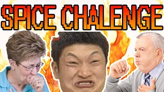 CRAZY INSANE CHALLENGE!!!! (GONE WRONG)