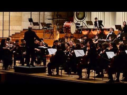 Malý úryvok z veľkej Osudovej, Youth Philharmonic Orchestra