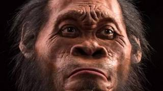 Dr Andy Herries on dating Homo naledi