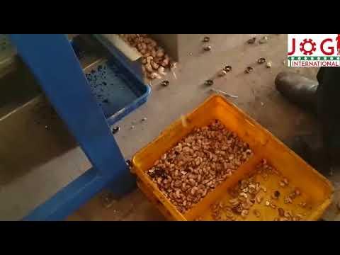 Cashew Oscillator Vibrator Machine