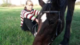 Horse- Doris Day