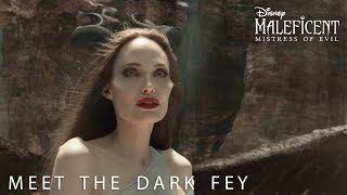 Disney's Maleficent: Mistress of Evil   Meet The Dark Fey