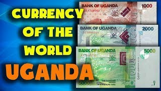 Currency of the world - Uganda. Ugandan shilling. Exchange rates Uganda. Ugandan banknotes and coins