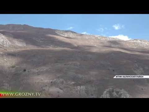 В Чечне продолжаются работы по восстановлению исторических памятников