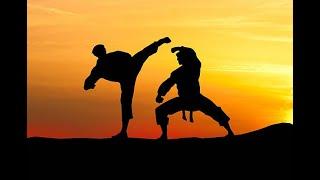 TelluguNew Kungfu the last monk Telugu dubbed movie